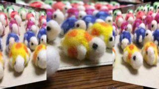 Handmade woolen felt wooks Introduction movie