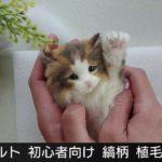 【羊毛フェルト】植毛のやり方  縞柄  猫  【初心者向け】