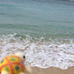 """""""ハワイの浜辺で裸足で散歩したいな〜!(*^ω^*)う〜ー〜み〜!この透き通るエメラル…"""""""